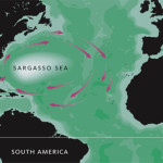 Sargasso-Sea-map