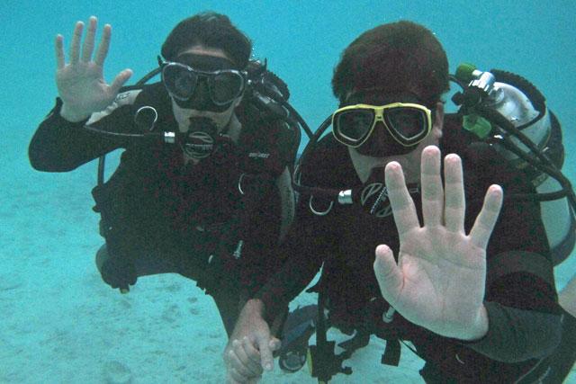 Dive-Butler