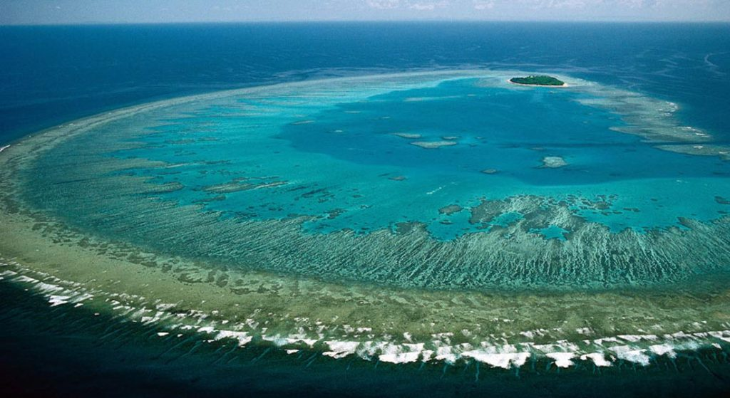 Great Barrier Reef Superyacht Australia; citizen scientists are needed for the Great Reef Census Project