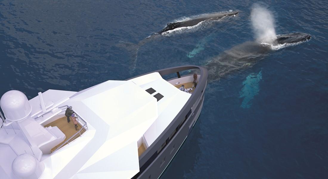 Damen SeaXplorer 55 megayacht