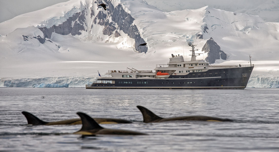 megayacht Legend single cabin Antarctica charter EYOS Expeditions