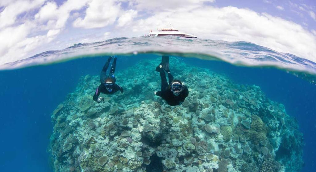 the Great Reef Census needs more superyachts to participate